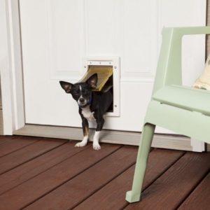 Porte pour chien «S» – Porte Isolée