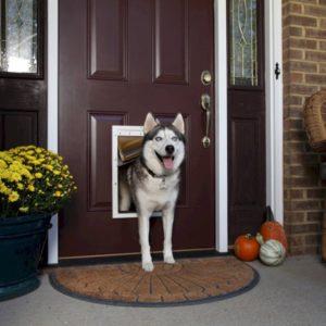 Porte pour chien «L» – Porte Isolée